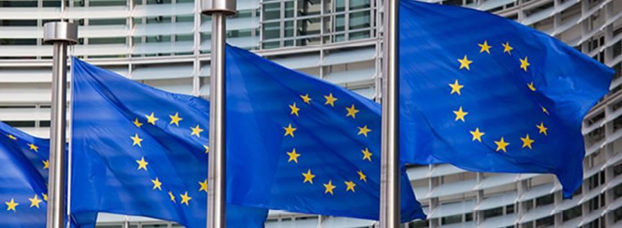European_Flag_601x288.jpg